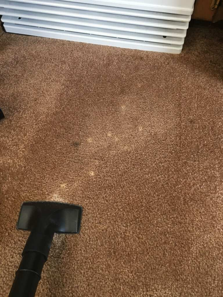 Bleach Spot & Carpet Stain Removal at All America Bank in OKC
